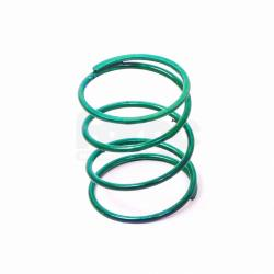 Uprated Dump Valve Spring (Single)